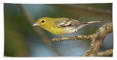 Yellow-throated Vireo Bath Towel by Alan Lenk