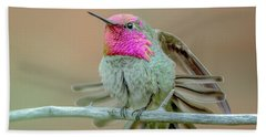 Anna's Hummingbird Bath Towel