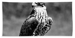 Portrait Of Bird Of Prey  Hand Towel