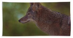 Coyote Hand Towel