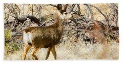 Mule Deer In The Pike National Forest Bath Towel