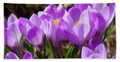 Purple Crocuses Bath Towel by Irina Afonskaya