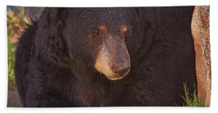 Black Bear  Hand Towel