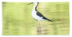 Hand Towel featuring the photograph Black-necked Stilt by Tam Ryan
