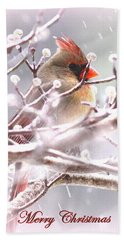 1554-003 Cardinal Hand Towel by Travis Truelove