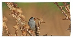 White-crowned Sparrow Bath Towel