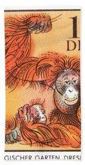 1975 East Germany Zoo Orangutan Postage Stamp Hand Towel