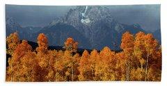 1m9235 Mt. Moran In Autumn Hand Towel