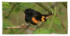 American Redstart Bath Towel by Alan Lenk
