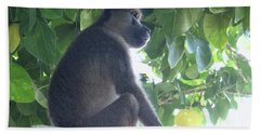 Baboon Sits Guard  Hand Towel