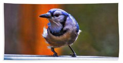 Bath Towel featuring the photograph Bluejay by Robert L Jackson