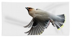 Bath Towel featuring the photograph Bohemian Waxwing  by Mircea Costina Photography