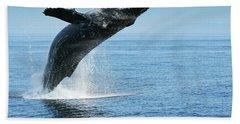 Breaching Humpback Whales Happy-1 Bath Towel
