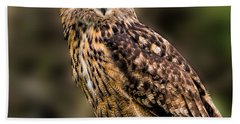 Eurasian Eagle Owl Perched On A Post Hand Towel