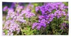 Bath Towel featuring the photograph Flowering Thyme by Elena Elisseeva
