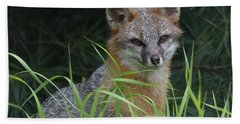 Gray Fox In The Grass Bath Towel