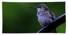 Hummingbird Portrait Hand Towel by Ronda Ryan