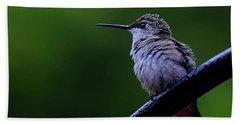 Hummingbird Portrait Bath Towel by Ronda Ryan