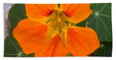 Hand Towel featuring the photograph Nasturtium by Stephanie Moore
