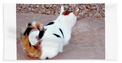 Silly Calico Kitty Hand Towel