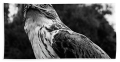 Portrait Of Bird Of Prey  Hand Towel
