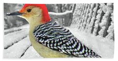 Red Bellied Woodpecker In Winter Bath Towel by Janette Boyd