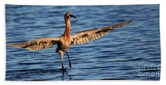 Reddish Egret Ocean Hand Towel