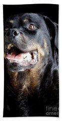 Rottweiler Dog Hand Towel