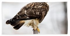 Rough-legged Hawk Hand Towel by Ricky L Jones