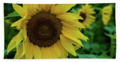 Sunflower Fields Hand Towel by Miguel Winterpacht