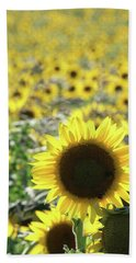 Sunflowers Mattituck New York Bath Towel