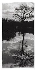 Tree Reflection Sebastopol Ca, Hand Towel