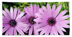 The African Daisy 2 Hand Towel