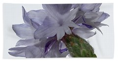 White With Blue Cornflower Bath Towel