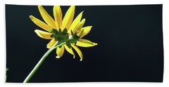 Wild Sunflower Stony Brook New York  Hand Towel