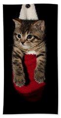 2010 Stocking Cat 2 Bath Towel