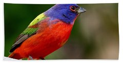 Painted Bunting Hand Towel