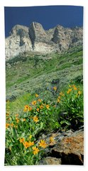 2d11120 Ramparts And Wildflowers Hand Towel