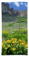 2d11127-dc South Wall And Wildflowers Hand Towel