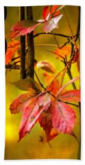 Hand Towel featuring the photograph Fall Colors by Eduard Moldoveanu