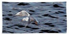 Flying Gull Bath Towel by Michal Boubin