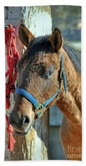 Horse Bath Towel by Savannah Gibbs