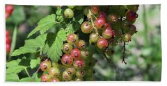 Bath Towel featuring the photograph My Currant by Elvira Ladocki