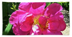 Hand Towel featuring the photograph Pink Rose by Stephanie Moore