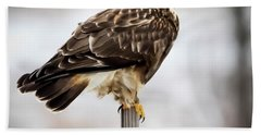 Rough-legged Hawk Bath Towel
