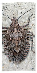 Stink Bug Hand Towel