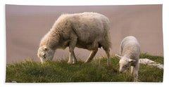 Welsh Lamb Hand Towel