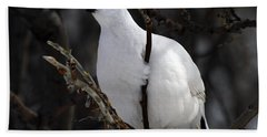 Willow Ptarmigan Bath Towel