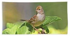 Golden -crowned Sparrow Bath Towel