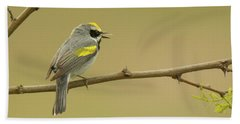 Golden-winged Warbler Bath Towel by Alan Lenk